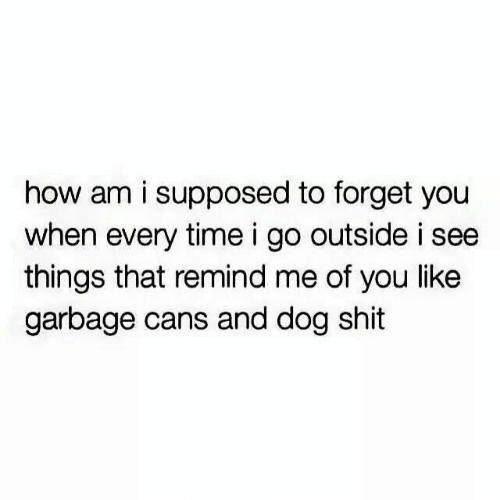 Shit, Time, and How: how am i supposed to forget you  when every time i go outside i see  things that remind me of you like  garbage cans and dog shit