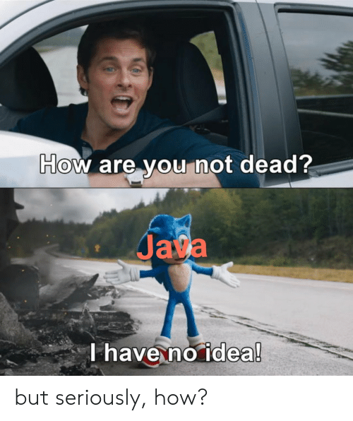 Java, How, and Idea: How are you not dead?  Java  T have no idea! but seriously, how?