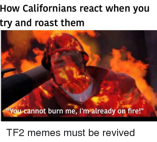 """tf2: How Californians react when you  try and roast them  You cannot burn me, I'm already on fire!"""" TF2 memes must be revived"""
