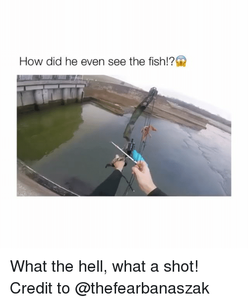 shotting: How did he even see the fish!? What the hell, what a shot! Credit to @thefearbanaszak