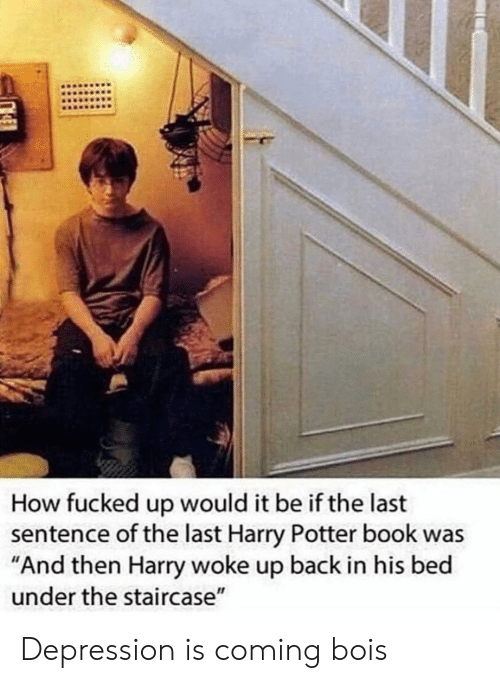 """Harry Potter, Book, and Depression: How fucked up would it be if the last  sentence of the last Harry Potter book was  """"And then Harry woke up back in his bed  under the staircase"""" Depression is coming bois"""