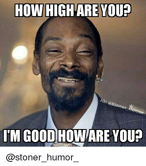 How High, Memes, and Good: HOW HIGH ARE YOU?  oner  IM GOOD HOWARE YOU? @stoner_humor_