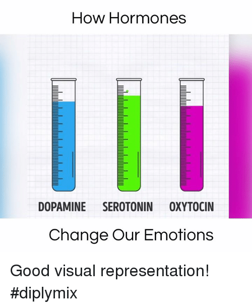 Memes, 🤖, and Dopamine: How Hormones  DOPAMINE SEROTONIN OXYTOCIN  Change Our Emotions Good visual representation! #diplymix