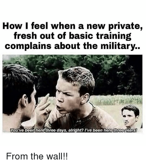 Basic Training: How I feel when a new private,  fresh out of basic training  complains about the military.  You've been here three days, alright? I've been herethreeyearst From the wall!!