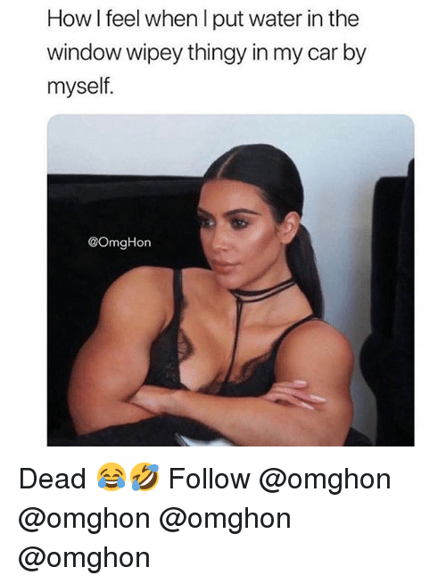 Memes, Water, and 🤖: How I feel when I put water in the  window wipey thingy in my car by  myself.  @OmgHon Dead 😂🤣 Follow @omghon @omghon @omghon @omghon