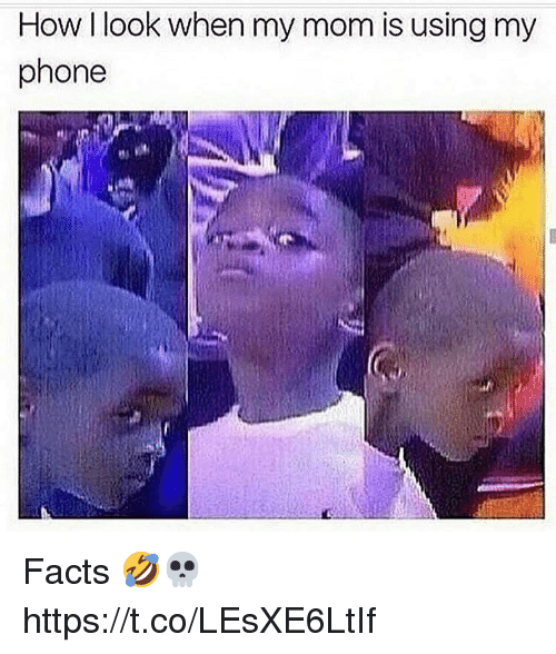 Facts, Phone, and Mom: How I look when my mom is using my  phone Facts 🤣💀 https://t.co/LEsXE6LtIf