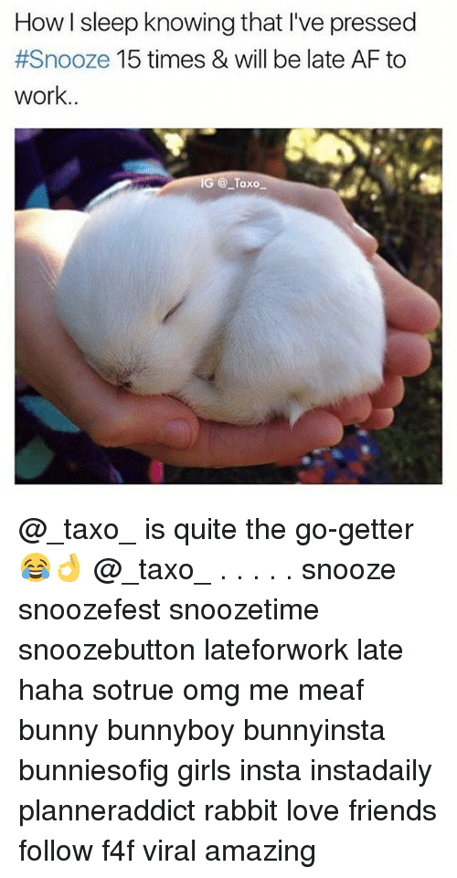 getter: How I sleep knowing that I've pressed  #Snooze 15 times & will be late AF to  work..  G @Taxo @_taxo_ is quite the go-getter 😂👌 @_taxo_ . . . . . snooze snoozefest snoozetime snoozebutton lateforwork late haha sotrue omg me meaf bunny bunnyboy bunnyinsta bunniesofig girls insta instadaily planneraddict rabbit love friends follow f4f viral amazing