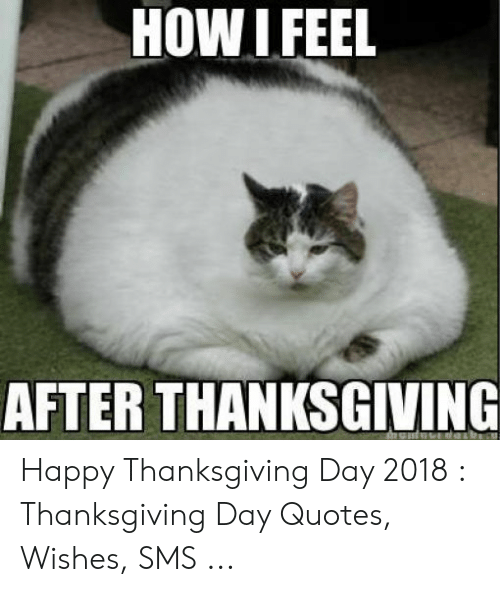 Thanksgiving, Happy, and Quotes: HOW IFEEL  AFTER THANKSGIVING Happy Thanksgiving Day 2018 : Thanksgiving Day Quotes, Wishes, SMS ...