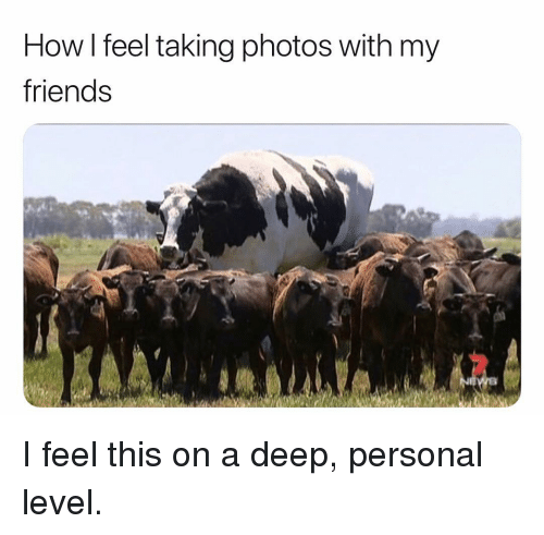 Friends, Girl Memes, and How: How l feel taking photos with my  friends I feel this on a deep, personal level.