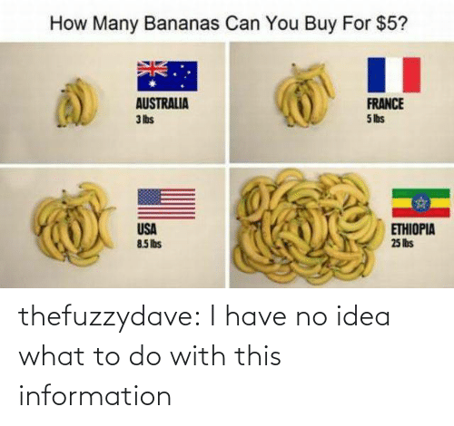 France: How Many Bananas Can You Buy For $5?  AUSTRALIA  3 lbs  FRANCE  5 lbs  USA  85Ibs  ETHIOPIA  25 lis thefuzzydave: I have no idea what to do with this information