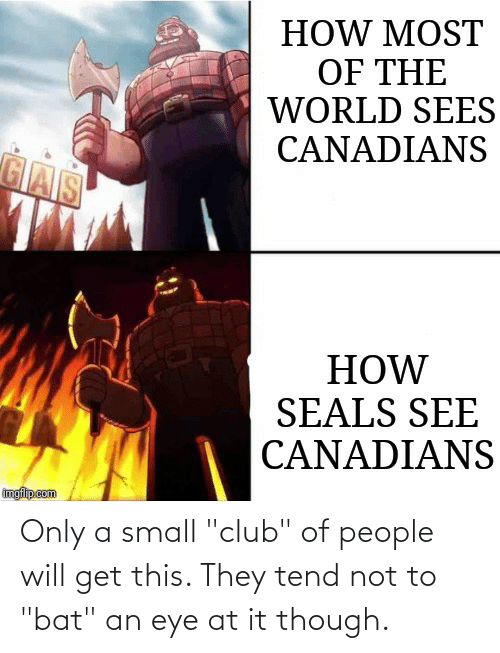 """Club, Funny, and World: HOW MOST  OF THE  WORLD SEES  CANADIANS  GAS  HOW  SEALS SEE  CANADIANS  imgfilip.com Only a small """"club"""" of people will get this. They tend not to """"bat"""" an eye at it though."""