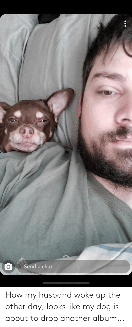 Like My: How my husband woke up the other day, looks like my dog is about to drop another album...