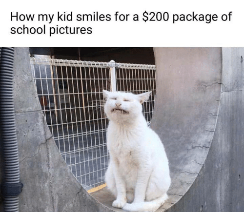 Memes, School, and Pictures: How my kid smiles for a $200 package of  school pictures