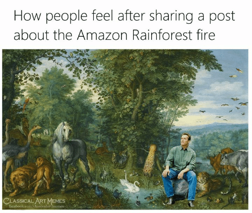 Amazon, Facebook, and Fire: How people feel after sharing a post  about the Amazon Rainforest fire  CLASSICAL ART MEMES  facebook.com/classicalartimemes