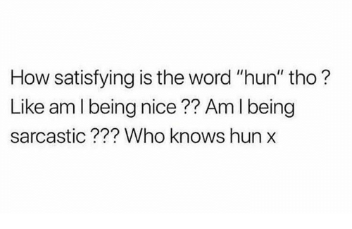"Memes, Word, and Nice: How satisfying is the word ""hun"" tho?  Like am l being nice?? Am I being  sarcastic??? Who knows hun"