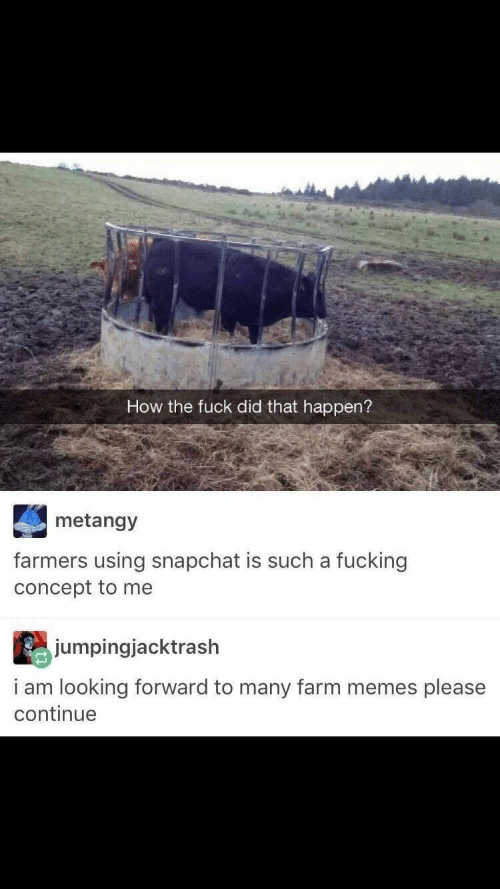 Memes, Snapchat, and How: How the fuck did that happen?  metangy  farmers using snapchat is such a fucking  concept to me  jumpingjacktrash  i am looking forward to many farm memes please  continue
