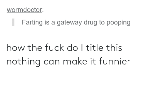 How The Fuck: how the fuck do I title this nothing can make it funnier