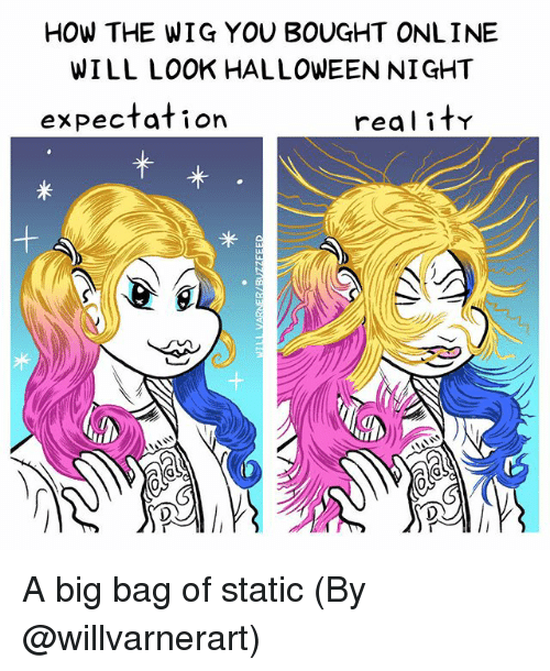 Halloween, Memes, and 🤖: HOW THE WIG YOU BOUGHT ONLINE  WILL LOOK HALLOWEEN NIGHT  expectation  real it A big bag of static (By @willvarnerart)
