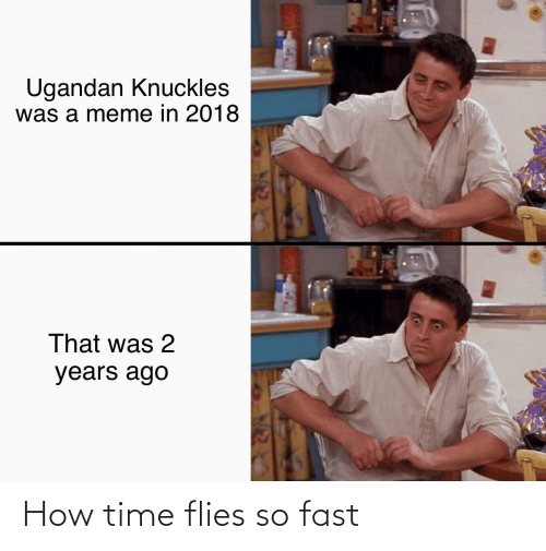 time flies: How time flies so fast