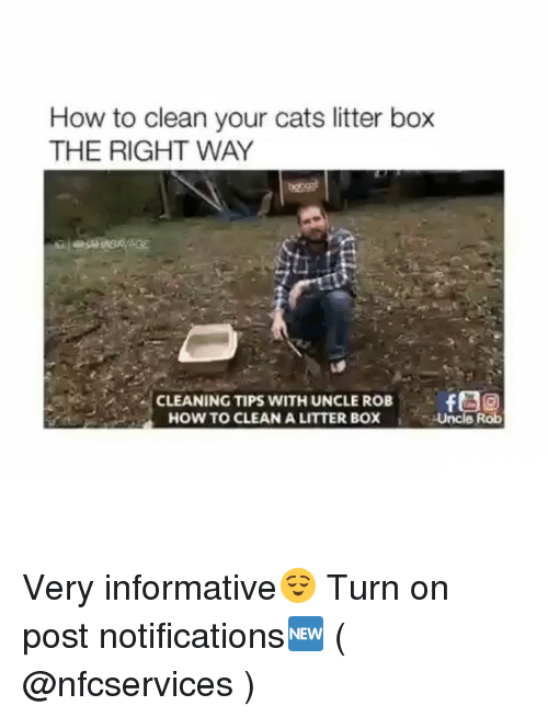 litter box: How to clean your cats litter box  THE RIGHT WAY  CLEANING TIPS WITH UNCLE ROB  HOW TO CLEAN A LITTER BOX  Uncle Rob Very informative😌 Turn on post notifications🆕 ( @nfcservices )