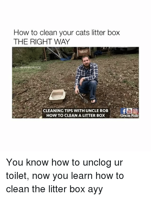 litter box: How to clean your cats litter box  THE RIGHT WAY  @HAHASAVAGE  A CLEANING TIPS WITH UNCLE ROB  HOW TO CLEAN A LITTER BOX You know how to unclog ur toilet, now you learn how to clean the litter box ayy