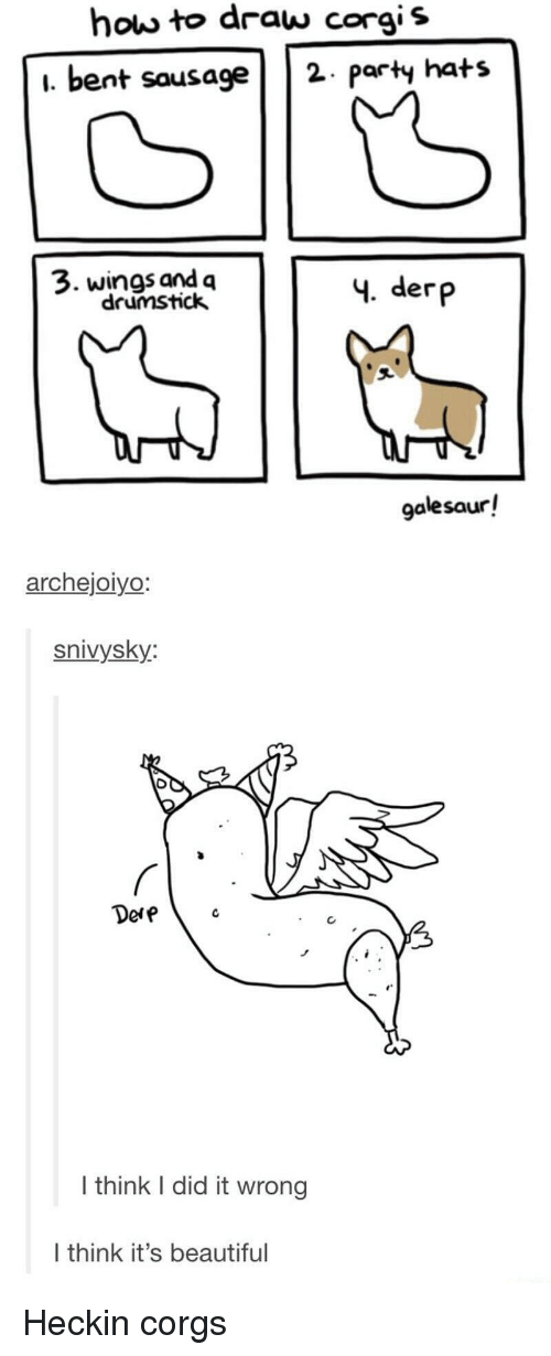 Corgis: how to draw corgis  i. bent sausage2 paty hats  3. wings and q  drumstick  4. derp  galesaur!  archejoiyo  snivysky:  Dere  I think I did it wrong  I think it's beautiful Heckin corgs
