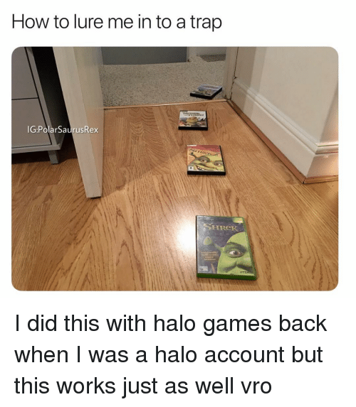 Halo, Memes, and Shrek: How to lure me in to a trap  IG:PolarSaurusRex  SHReK I did this with halo games back when I was a halo account but this works just as well vro
