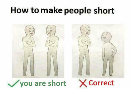 How To, How, and Make: How to make people short  o.  you are short X Correct