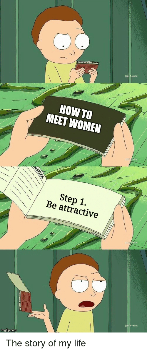 Life, How To, and Women: HOW TO  MEET WOMEN  Step 1.  Be attractive  (aduit swim)  imgflip.com The story of my life