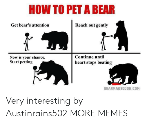 Reach Out: HOW TO PET A BEAR  Get bear's attention  Reach out gently  Now is your chance.  Start petting  Continue until  heart stops beating  BEARMAGEDDON COM Very interesting by Austinrains502 MORE MEMES