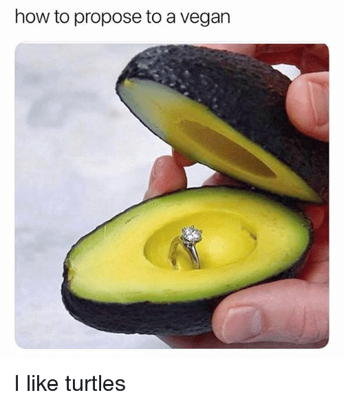 Vegan, How To, and Relatable: how to propose to a vegan I like turtles