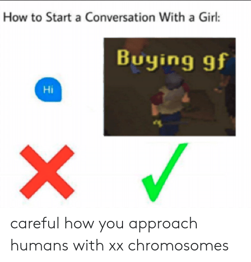 How To Start A Conversation: How to Start a Conversation With a Girl:  Buying gf  Hi careful how you approach humans with xx chromosomes