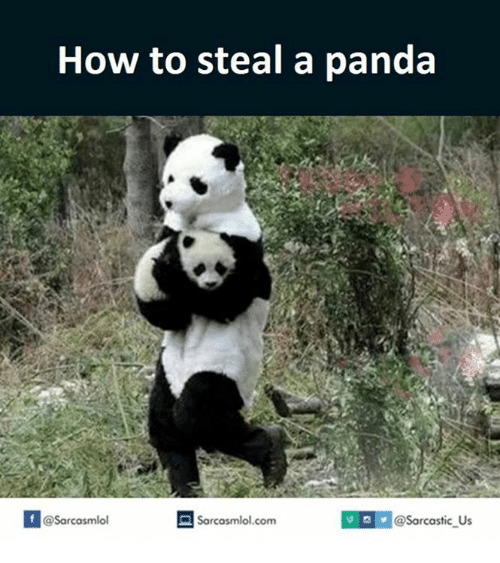 How To Steal: How to steal a panda  If alsarcasmlol.com  @Sarcastic Us  @Sarcasmlol
