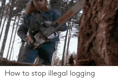 How To, How, and Logging: How to stop illegal logging