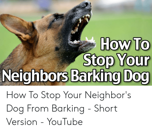 How to Stop Your Neighbors Barking Dog How to Stop Your
