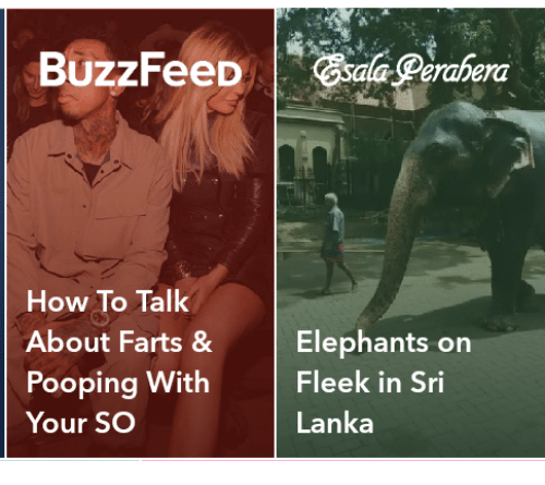 How To, Elephants, and How: How To Talk  About Farts &Elephants on  Pooping With  Your SO  Fleek in Sri  Lanka