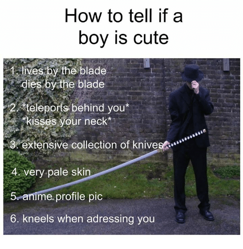 Blade, Kiss, and Dank Memes: How to tell if a  boy is cute  lives by the blade  dies by the blade  teleports behind you  2, *kisses your neck  3 extensive collection of knivesA  4 very pale skin  5 anime profile pic  6. kneels when adressing you