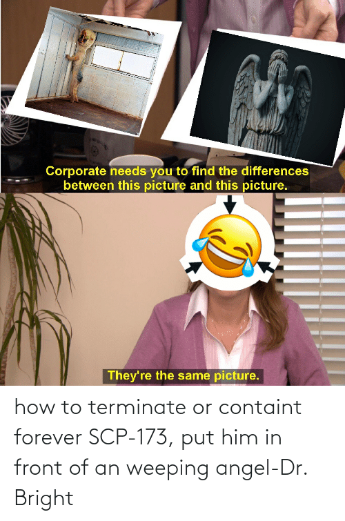 scp-173: how to terminate or containt forever SCP-173, put him in front of an weeping angel-Dr. Bright