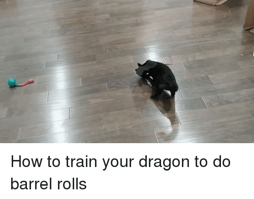How To, Train, and How: How to train your dragon to do barrel rolls