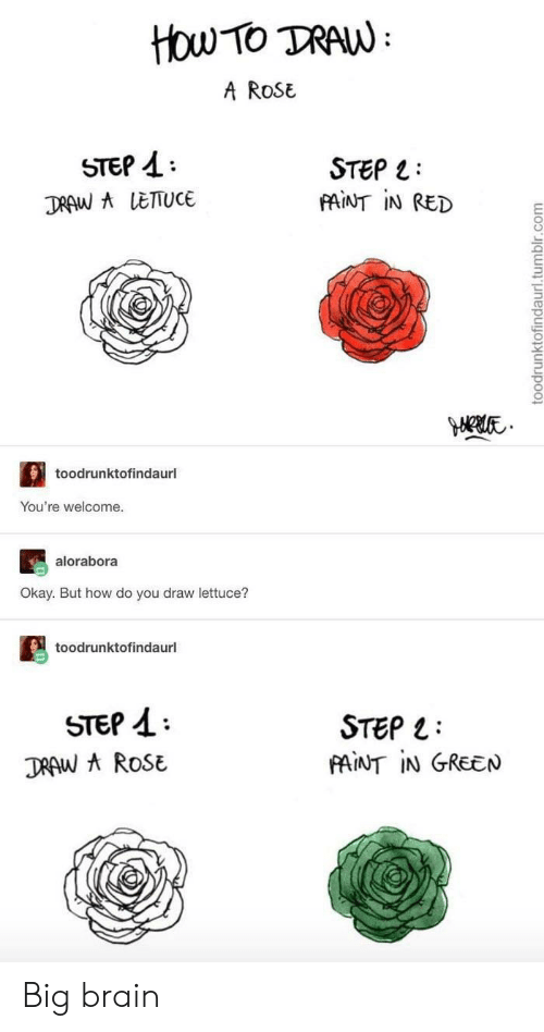 A Rose: How TO TRAW  A ROSE  STEP  STEP  FAINT IN RED  DRAW A LETTUCE  toodrunktofindaurl  You're welcome.  alorabora  Okay. But how do you draw lettuce?  toodrunktofindaurl  STEP  DRAW AROSE  STEP  PAINT IN GREEN  toodrunktofindaurl.tumblr.com Big brain