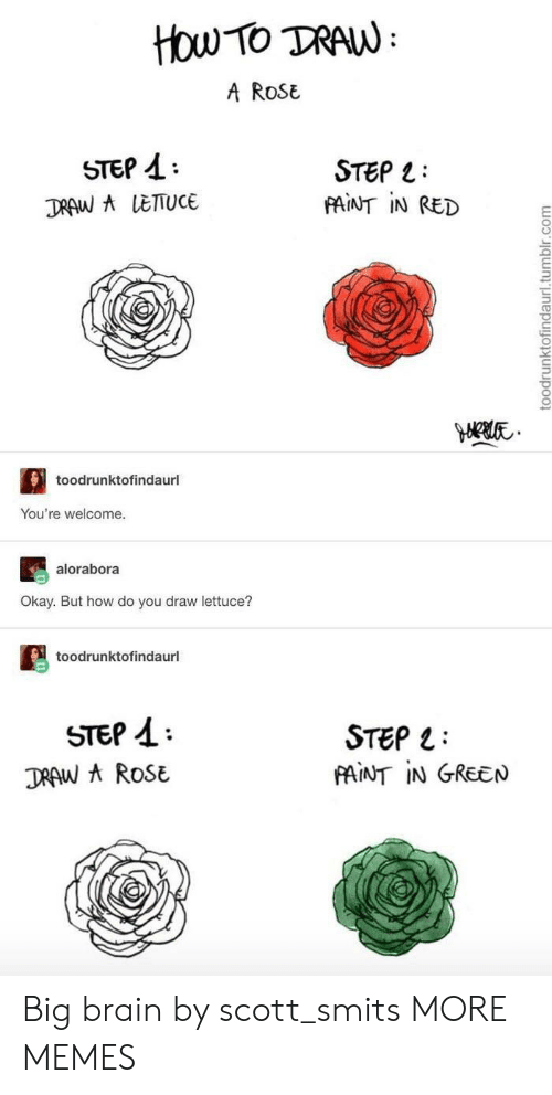 A Rose: How TO TRAW  A ROSE  STEP  STEP  FAINT IN RED  DRAW A LETTUCE  toodrunktofindaurl  You're welcome.  alorabora  Okay. But how do you draw lettuce?  toodrunktofindaurl  STEP  DRAW AROSE  STEP  PAINT IN GREEN  toodrunktofindaurl.tumblr.com Big brain by scott_smits MORE MEMES