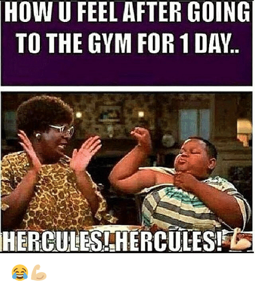 hercules: HOW  U FEEL AFTER GOING  TO THE GYM FOR 1 DAY.  HERCULES -HERCULES! 😂💪🏼