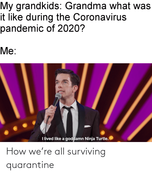 how: How we're all surviving quarantine