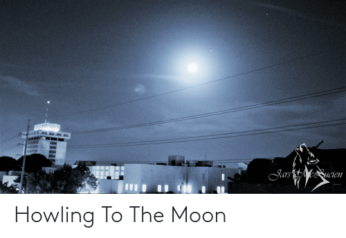 howling: Howling To The Moon