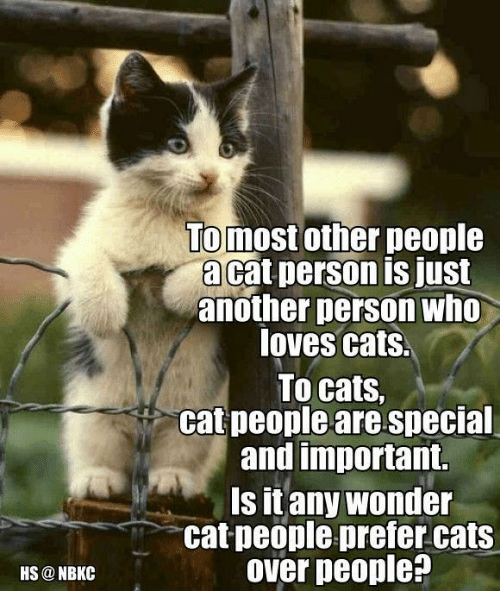 Memes, 🤖, and Personal: HS NBKC  To most other people  acat person is just  another person who  loves cats.  To cats,  cat people are special  and important.  Is it any wonder  cat people prefer cats  over people?