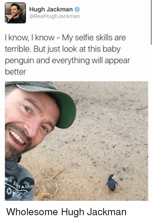 Selfie, Hugh Jackman, and Penguin: Hugh Jackman  @RealHughJackman  I know, I know My selfie skills are  terrible. But just look at this baby  penguin and everything will appear  better Wholesome Hugh Jackman