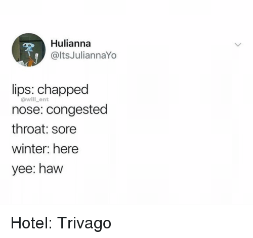 Memes, Winter, and Yee: Hulianna  @ltsJuliannaYo  lips: chapped  nose: congested  throat: sore  winter: here  yee: haw  @will_ent Hotel: Trivago