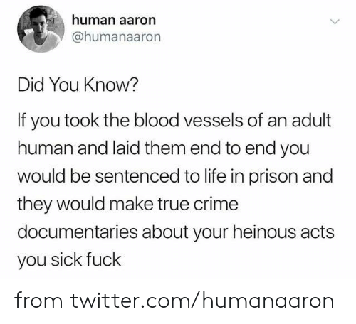 laid: human aaron  @humanaaron  Did You Know?  If you took the blood vessels of an adult  human and laid them end to end you  would be sentenced to life in prison and  they would make true crime  documentaries about your heinous acts  you sick fuck from twitter.com/humanaaron