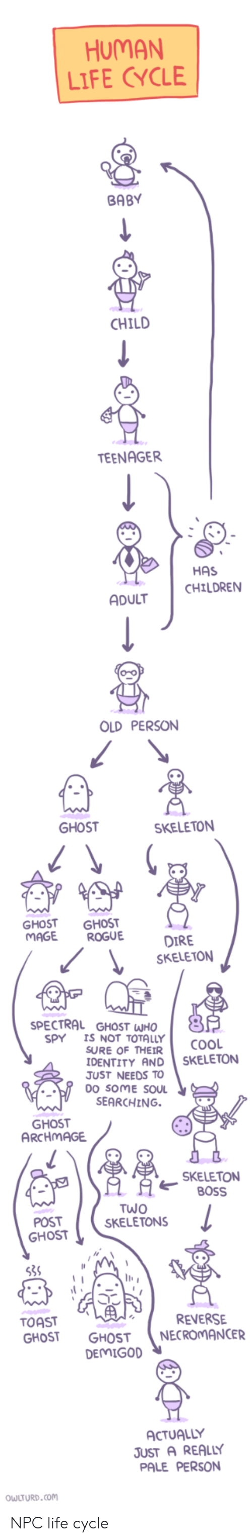 Soul Searching: HUMAN  LIFE CYCLE  BABY  CHILD  TEENAGER  HAS  CHILDREN  ADULT  OLD PERSON  SKELETON  GHOST GHOST  MAGE ROGUE  SKELETON  SPECTRAL GHOST WHO  5  SPY I NOT TOTALLY cooL  SURE OF THEIR  IDENTITY AND SKELETON  JUST NEEDS TO  DO SOME SOUL  SEARCHING.  SKELETON  80SS  POST  SKELETONS  OST  TOAST  GHOST GHOST NECROMANCER  REVERSE  DEMIGOD  ACTUALLY  JUST A REALLY  PALE PERSON  OWLTURD.com NPC life cycle