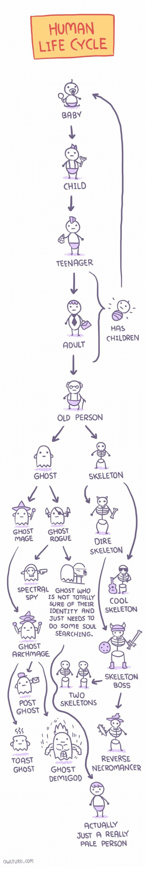 Rogue: HUMAN  LIFE CYCLE  BABY  CHILD  TEENAGER  HAS  CHILDRENN  ADULT  OLD PERSON  GHOST  SKELETON  GHOST GHOST  MAGE ROGUE  DIRE  SKELETON  SPECTRAL GHOST WHO  SPY IS NOT TOTALLY  SURE OF THEIR  COOL  DENTITY AND SKELETON  JUST NEEDS TO  DO SOME SOU  SEARCHING.  GHOST  ARCHMAGE  SKELETON  OSS  POST  GHOST  TWO  SKELETONS  la  539  TOAST  GHOST GHOSTNECROMANCER  REVERSE  DEMIGO  ACTUALLY  JUST A REALLY  PALE PERSON  WLTURD.com